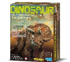4M Triceratops Dinosaur Skeleton