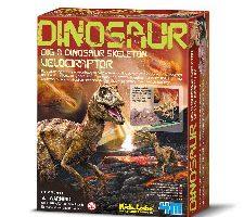 4M Velociraptor Dinosaur Skeleton